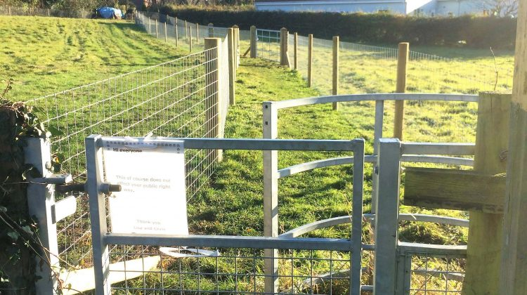 Metal kissing gate for footpaths